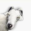 Козёл Фрэнк Frank LiveJournal, Живой Журнал