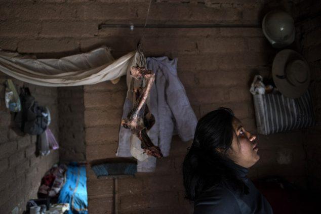 26-летняя Ремедио Сарапура в крошечном глинобитном жилище на окраине Сускеса. С потолка свисают кости ламы. Стадо лам, принадлежащее семье, сократилось вдвое из-за осушения пастбищ