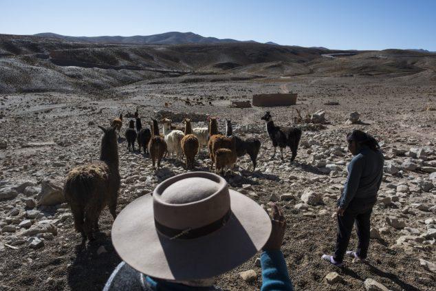 По словам 66-летнего Нативидада Сарапуры (в шляпе), с приходом добывающих компаний роскошные пастбища на окраине Сускеса превратились в пустыню