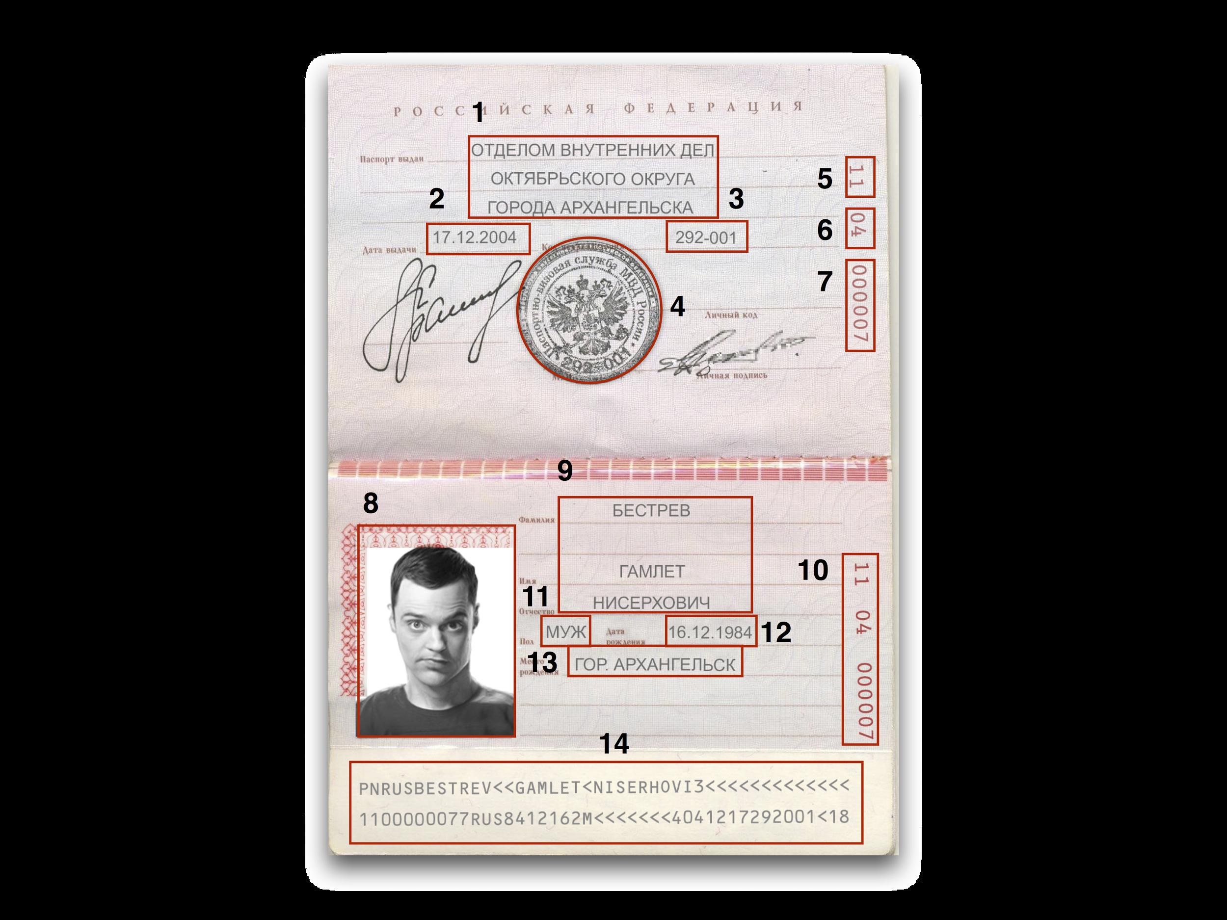 Как сделать поддельную копию паспорта фото 241