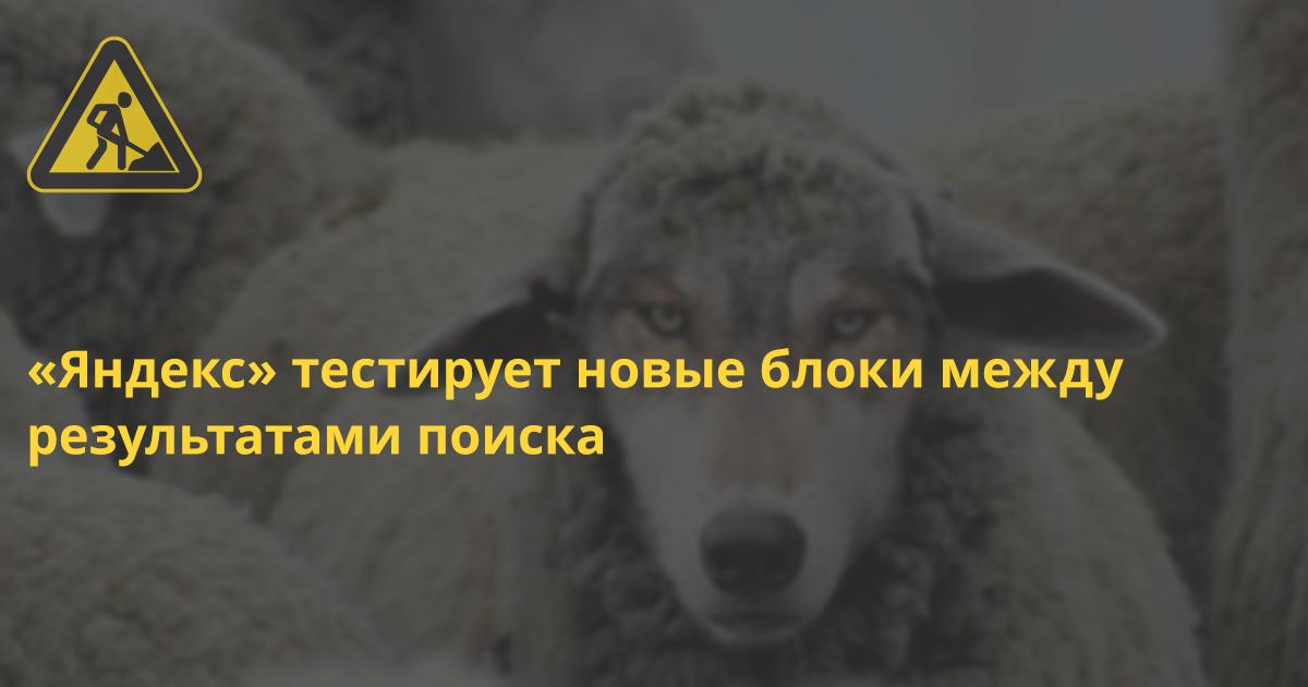 Фото: roem.ru