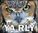 ya-rly.jpg