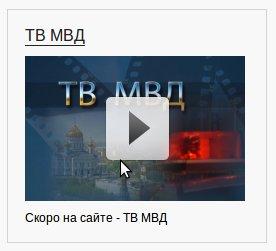 Полицейские за 2 млн рублей сделали сайт со своим телевидением и блэкджеком